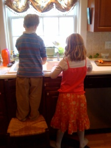 kids clean carrots